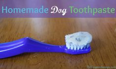 homemade dog toothpaste recipe