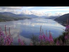 The artist of nature, colors, passions, love, and of course dreams.    A tribute to Ireland