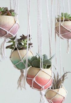 38 Gorgeous DIY Hanging Planters to Help You Breathe More Easily Indoor Succulent Planter, Diy Hanging Planter, Hanging Succulents, Diy Planters, Succulent Pots, Hanging Pots, Planter Ideas, Repotting Succulents, Suculentas Diy
