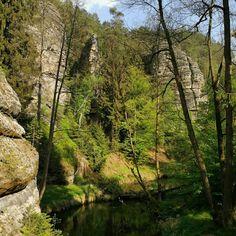 České Švýcarsko patří k nejkrásnějším místům v České republice. Rozhodně by vám neměla uniknout tato místa. Opravdu stojí za vidění. Plants, Plant, Planets