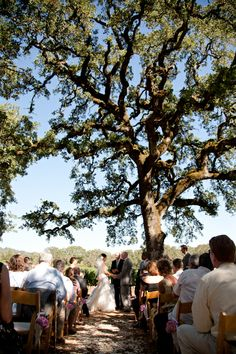 Coordination: LVL Events (www.lvlevents.com) // Venue: BR Cohn Winery // Photography: Ken Buck Photography // Florals: Lavender Country Garden Florals