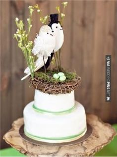 So neat! - Cute Cake Topper- Birds. | CHECK OUT MORE GREAT GREEN WEDDING IDEAS AT WEDDINGPINS.NET | #weddings #greenwedding #green #thecolorgreen #events #forweddings #ilovegreen #emerald #spring #bright #pure #love #romance