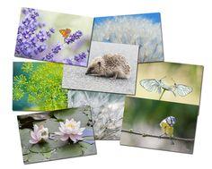 Fleurs, 8 cartes postales de nature écologiques  est une création orginale de Veronique-Brosseau-Matossy sur DaWanda