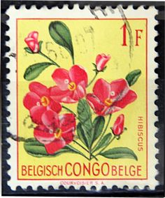 Congo Democratic Republic,  FLOWERS IN NATURAL COLORS. HIBISCUS. Scott 329  A86.  1.00f, Perf 11 1/2.  Issued 1960 June 30.  Unwmk. 21 x 25 1/2 mm.