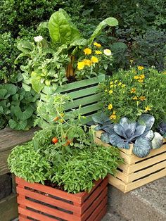 Vegetable Garden Boxes! Love this idea for some free standing veggies either in the garden or on the porches or steps. A tomato would grow beautifully!