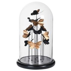 Golden Butterfly Dome | Home Decor | England At Home Glass Dome Display, Glass Domes, Fabric Door Stop, England Houses, Butterfly Ornaments, Contemporary Style Homes, The Bell Jar, T Lights, Dark Stains