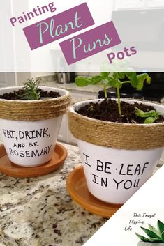 Painting Plant Puns Pots - This Frugal Flipping Life - DIY Decor - Painting Pots Painted Plant Pots, Painted Flower Pots, Indoor Garden, Indoor Plants, Ivy Plants, Potted Plants, Frugal, Kitchen Herbs, Herbal Kitchen