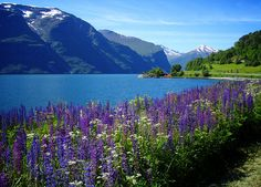 Amazing view from Romsdalsfjord, the ninth longest fjord in Norway.