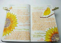 This was one of the ideas I could find to put in my smash journal along with flower pressing and colors, cut outs, ect