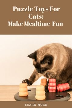 """Does your cat seem bored with mealtime, or is he a cat that often gobbles his food, then does the infamouns """"binge and purge?"""" If so, puzzle toys for cats can be a big help. Learn more about them in this article"""