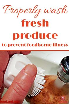 Properly wash fresh produce to prevent foodborne illness and promote food safety from UNL Canning Recipes, Fun Recipes, Veggie Recipes, Foodborne Illness, Long Term Food Storage, Food Technology, Food System, Sustainable Food, Eating Organic