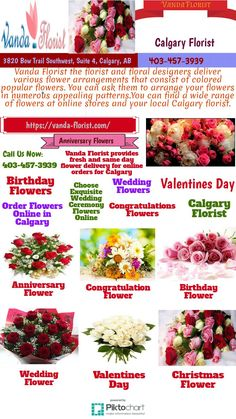 Order flowers online with same day flower delivery in calgary from vanda florist.provides fresh flowers for occasions like : wedding , birthday, christmas day, anniversary etc. plz Call us today: 403-457-3939. address: 3820 bow trail southwest, suite 4, calgary, alberta Christmas Flower Delivery, Same Day Flower Delivery, Popular Flowers, Order Flowers Online, Fresh Flowers, Calgary, Flower Arrangements, Trail, Floral Design