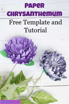Paper Chrysanthemum Flower Template - DOMESTIC HEIGHTS diy paper flower tutorial, free svg and printable templates, paper chrysanthemum, paper craft ideas Giant Paper Flowers, Diy Flowers, Fabric Flowers, Flowers Garden, Exotic Flowers, Purple Flowers, Paper Flower Patterns, Paper Flower Tutorial, Pattern Paper