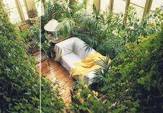 "-- via Terence Conran's ""Decorating With Plants,"" 1986 . . . . . #botanicals #jungalowstyle #plantspiration #weloveplants #plants #decoratingwithplants #urbanjungle #postitfortheaesthetic #pursuepretty #cylcollective #dslooking #ardentfinds #plantcorner #interiordesign #indoorgarden #houseplants #indooroutdoor #monstera #designarchives #plantstagram #crazyplantlady #plantaddiction #instaplants #interiordesign #interiordecor #midcenturymodern #interiorinspo"