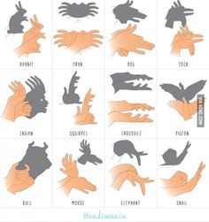 Shadow forms made by hand used to do some of these as a kid.
