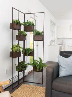 Indoor Plant Wall, Indoor Plants, Indoor Plant Shelves, Indoor Outdoor, Indoor Living Wall, Living Room With Plants, Wall Garden Indoor, Outdoor Living, Small Balcony Garden