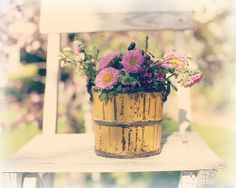 Sunshiny day by lucia and mapp, via Flickr