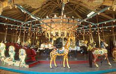Raleigh, NC -- Pullen Park Carouse -- I remember my grandmother visiting and we both, as adults, rode the carousel together. Fond memory.