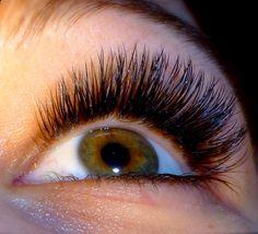 Zsinett Lashes Fake Lashes, Eyelashes, Volume Lashes, Eyelash Extensions, 3d, Lashes, False Eyelashes, Lash Extensions, Fake Eyelashes