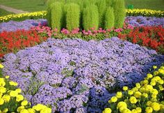 33 Beautiful Flower Beds Adding Bright Centerpieces to Yard Landscaping and Garden Design Colorful Flower Beds, Garden Design, Backyard Flowers, Floral Garden, Beautiful Flowers, Landscaping With Rocks, Flowers, Yard Landscaping, Small Flowering Plants