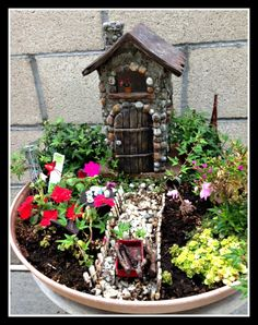 Exciting Mini Fairy Gardens Photos From Our Customers