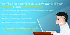 Discover how you can get weekly updates to help you improve your SEO, Market trends and user behavior at passionbot.com