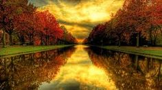 beautiful images of nature - Google Search