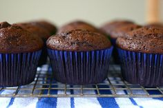 Basic Chocolate Cupcakes