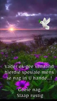 Good Night Prayer, Good Night Quotes, Good Night Flowers, Afrikaanse Quotes, Goeie Nag, Special Quotes, Day Wishes, Love Rose, Beautiful Landscapes