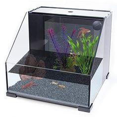 Penn-Plax AquaTerrium Fish Tank (REPTT1R) – 2 Chambers, 1 Biological Ecosystem – for Aquaponic, Refugium, and Freshwater Aquarium Setups – 8.4 Gallons, Glass