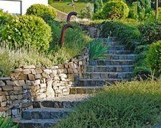 Ogród - zdjęcie od Pracownia Projektowa Architektury Krajobrazu Januszówka