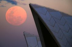 This is the second supermoon of the year. Pictured: The moon rose over the Sydney Opera House in Australia. Big Moon, Full Moon, Supermoon Photos, Melbourne, Astronomical Events, Sky Watch, World Travel Guide, Beautiful Moon, Super Moon