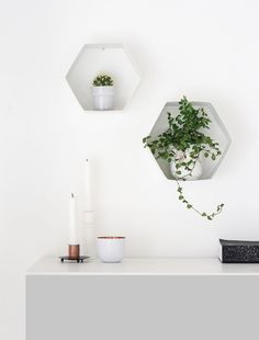 Quick and Easy DIY Hexagon Wall Shelves for Plants