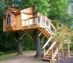 One of our earlier projects we have worked on.  The tree house is being supported by two tri-beams.
