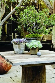Around Southern California, landscape designer Scott Shrader is known for civilized, amenity-filled gardens that are tailor-made for life outside. At his own home, a 1,600-square-foot Regency-style cottage in West Hollywood, Shrader transformed a cramped, 24-by-45-foot brick-and-concrete backyard into this stunning escape.<p> </p>