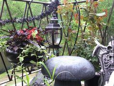 Gothic gardening with black plant varieties, gargoyles, dark garden decor ideas, and inspiration for creating your own Gothic-themed garden. @WebSpinstress