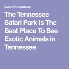 The Tennessee Safari Park Is The Best Place To See Exotic Animals in Tennessee