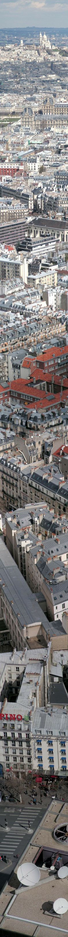 Paris from top to bottom.  I LOVE THIS CITY!  I can't wait to go back.