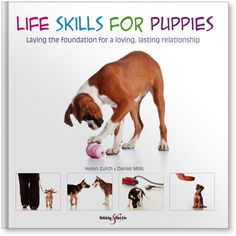 """Read """"Life skills for puppies Laying the foundation for a loving, lasting relationship"""" by Helen Zulch available from Rakuten Kobo. Every year millions of puppies enter homes, carrying their new family's expectation of a wonderful relationship. Dog Training Books, Appropriate Behavior, Foundation, Teaching Skills, Dog Safety, New Puppy, Diy Stuffed Animals, Life Skills, Your Dog"""