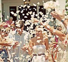 throw petals at wedding