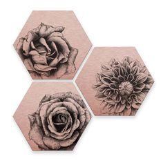 Alu-Dibond Kools Hexagon Rose Wandbild Wanddeko