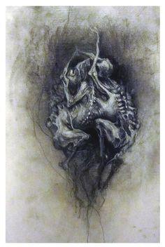 """Aurore Lephilipponnat """" Embryon"""" 32.5x50 cm Fusain, pierre noire sur canson  http://www.aurore-lephilipponnat.com/"""
