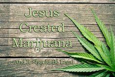 Jesus created marijuana and it should be legal. http://bit.ly/1ZhoNeS  #MedicalMarijuana #MarijuanaMovement #Marijuanadelivery #MarijuanaFacts #Jesus #legal #Proposition64 #LegalizeIt #potvaletsantabarbara #santabarbara