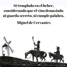 Las 19 Mejores Imágenes De Don Quijote Don Quijote Frases