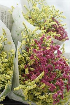 【花束定期便】晴耕雨読と夏の花|Flower note の 花日記