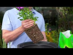 Organic VS Non Organic Potting Soil: How To Choose The Right One