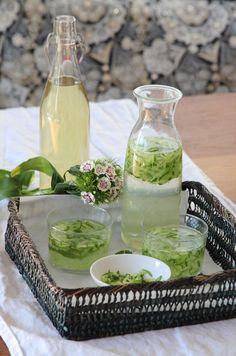 Sharbat-e Sekandjebin Khiyar ist eine herrlich erfrischende persische Limonade aus Minz-Sirup, Wasser, einige Spritzer Zitronensaft und geriebenen Gurken. Das Besondere am persischen Minz-Sirup ist die Zugabe vonWeißweinessig und Nana-Minze. Nana bedeutet auf persisch Minze. DerEssig sorgt für eine Süß-Saure Komponente, die wir Perser besonders mögen. Die Zubereitung geht schnell und ist ganz simpel. Die Ursprungsform wird mit Honig, Essig und Kräutern zubereitet. Für medizinische Zwecke…