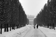 Schönbrunn, Vienna (by MaximeF) Somewhere Only We Know, Vienna Austria, Travel Destinations, Places To Go, City, World, Photography, Outdoor, Image