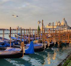 Gondoleando #venecia #sunrise #igersvenezia #venezia #igeritalia #igersitaly #hallazgosemanal