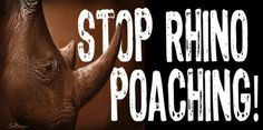 Help support Stop Rhino Poaching.